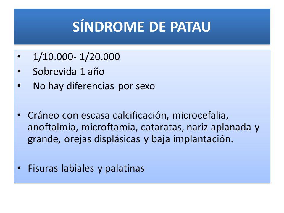 SÍNDROME DE PATAU 1/10.000- 1/20.000 Sobrevida 1 año