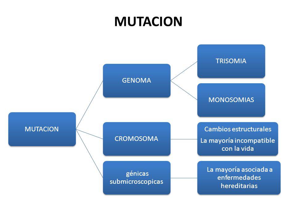 MUTACION MUTACION GENOMA TRISOMIA MONOSOMIAS CROMOSOMA