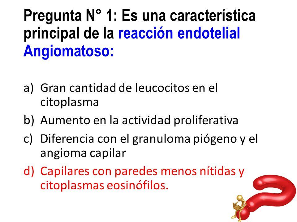 Pregunta N° 1: Es una característica principal de la reacción endotelial Angiomatoso: