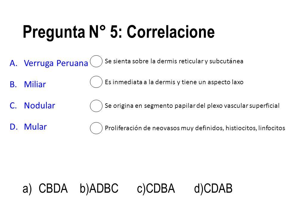 Pregunta N° 5: Correlacione