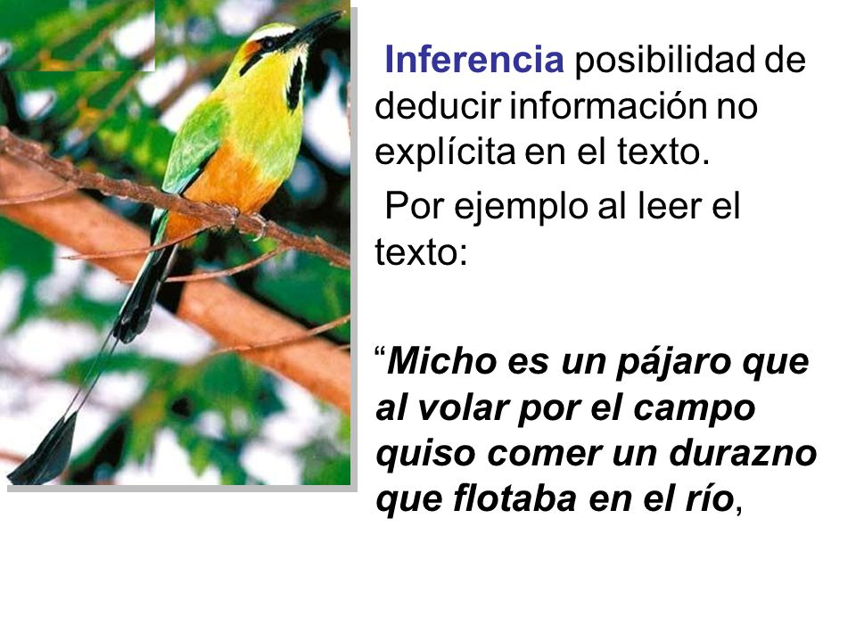 Inferencia posibilidad de deducir información no explícita en el texto.