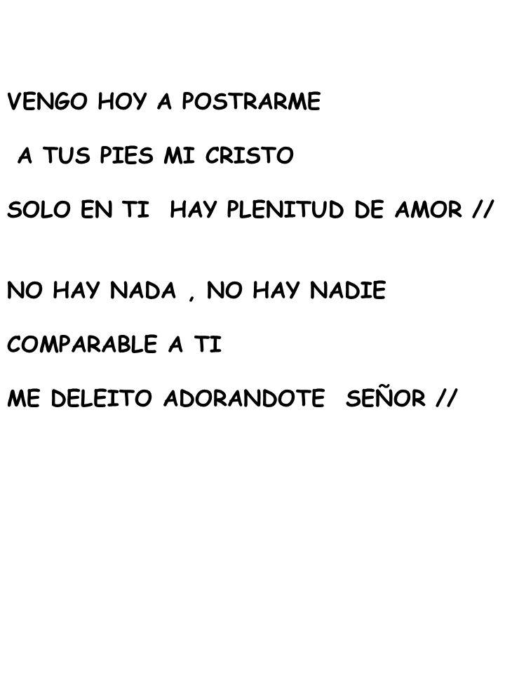 VENGO HOY A POSTRARME A TUS PIES MI CRISTO. SOLO EN TI HAY PLENITUD DE AMOR // NO HAY NADA , NO HAY NADIE.