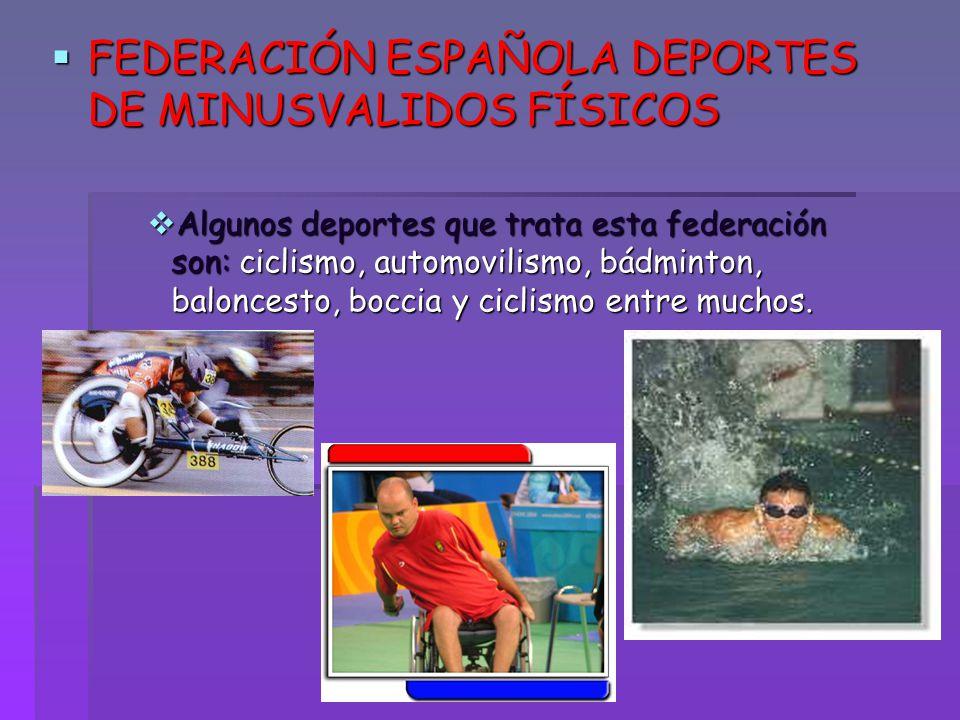 FEDERACIÓN ESPAÑOLA DEPORTES DE MINUSVALIDOS FÍSICOS