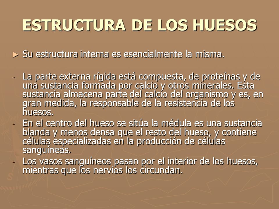 ESTRUCTURA DE LOS HUESOS
