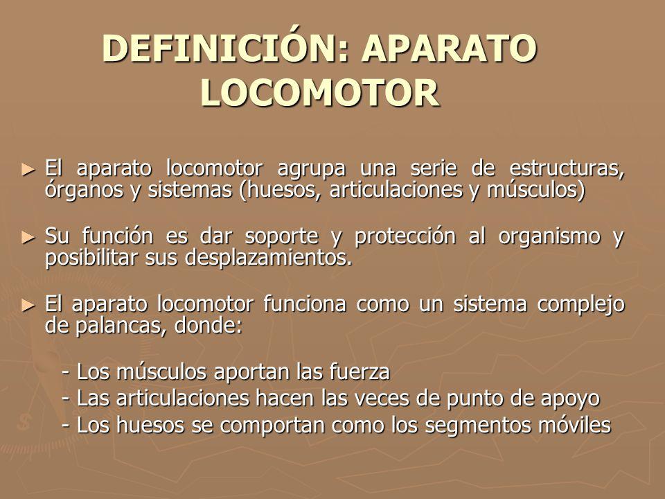 DEFINICIÓN: APARATO LOCOMOTOR