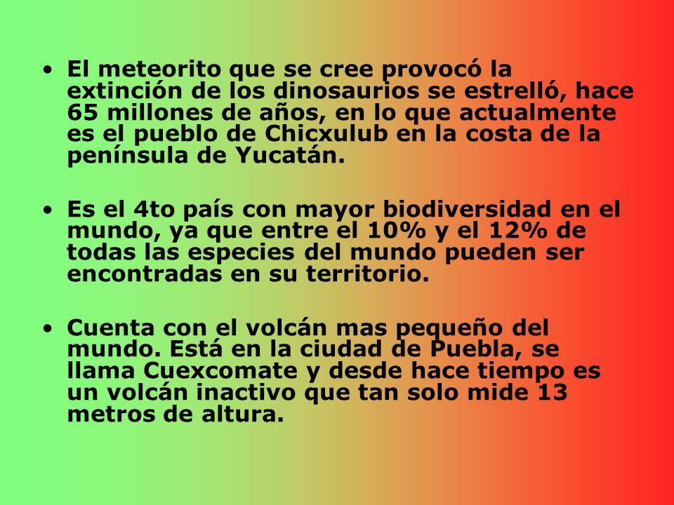 El meteorito que se cree provocó la extinción de los dinosaurios se estrelló, hace 65 millones de años, en lo que actualmente es el pueblo de Chicxulub en la costa de la península de Yucatán.
