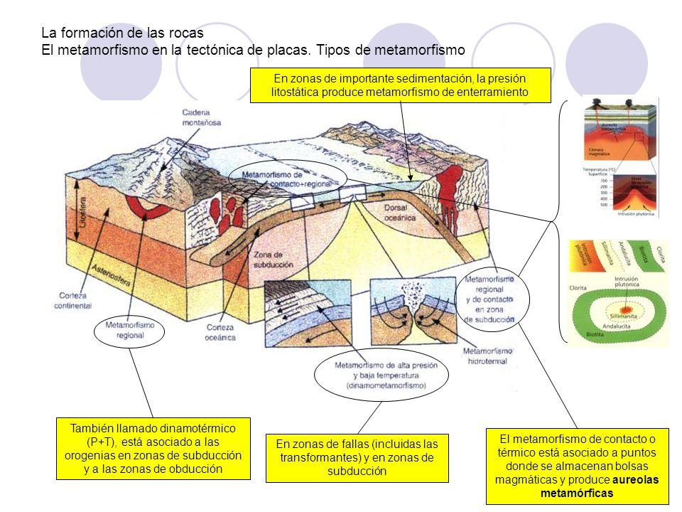 La formación de las rocas El metamorfismo en la tectónica de placas