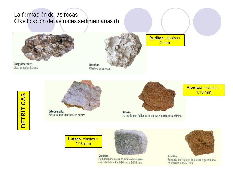 La formación de las rocas Clasificación de las rocas sedimentarias (I)