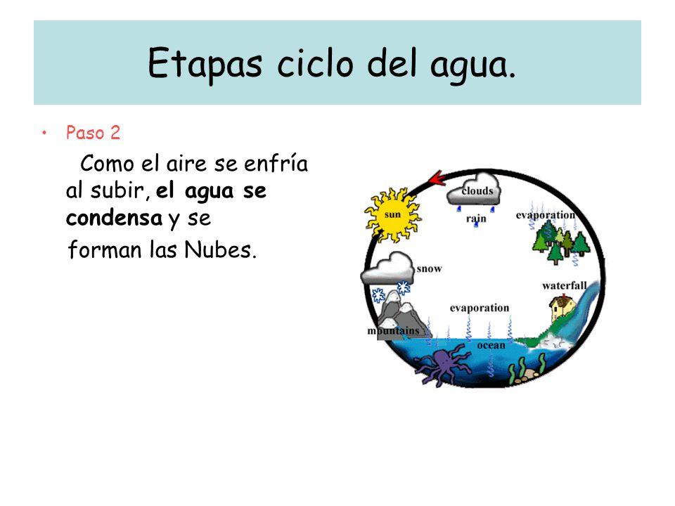 Etapas ciclo del agua. forman las Nubes. Paso 2