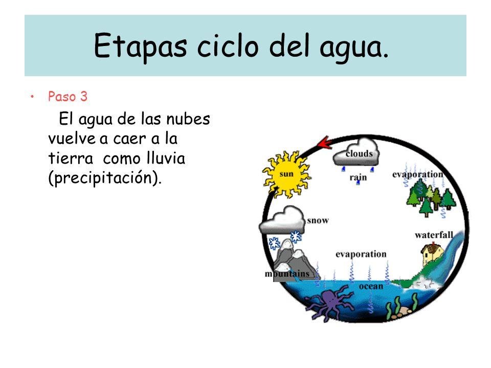 Etapas ciclo del agua. Paso 3