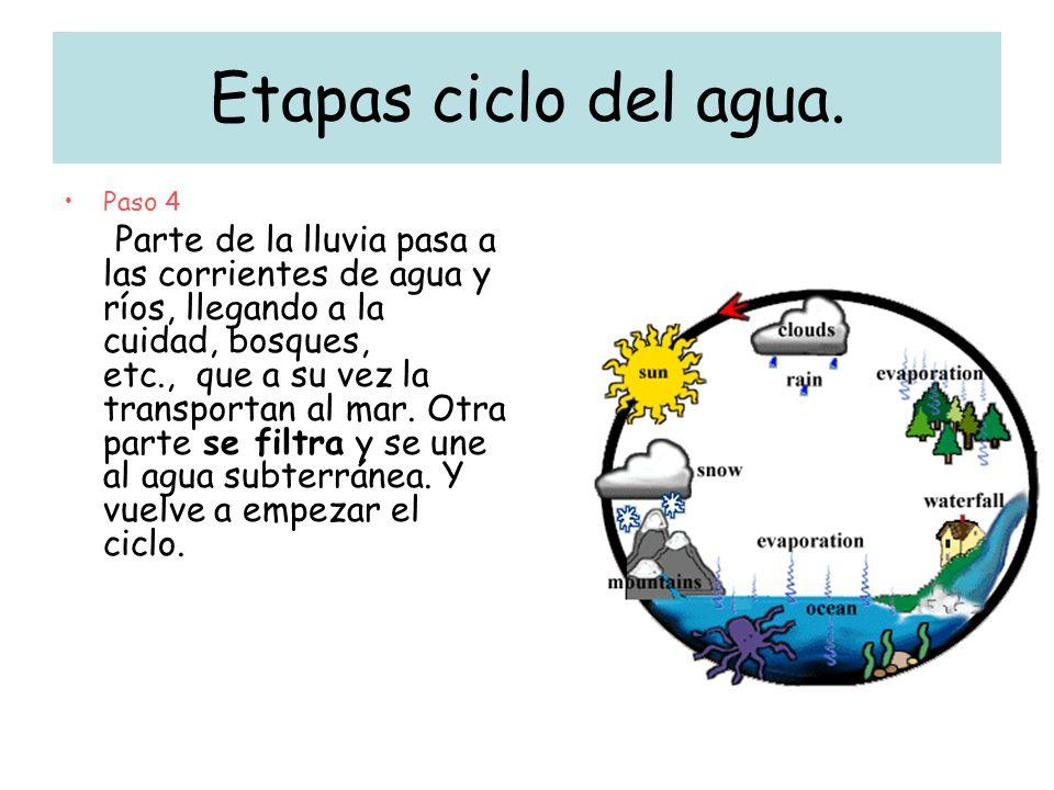 Etapas ciclo del agua. Paso 4.