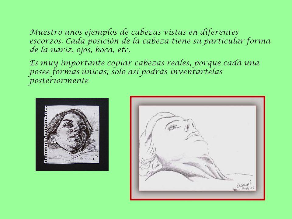 Muestro unos ejemplos de cabezas vistas en diferentes escorzos