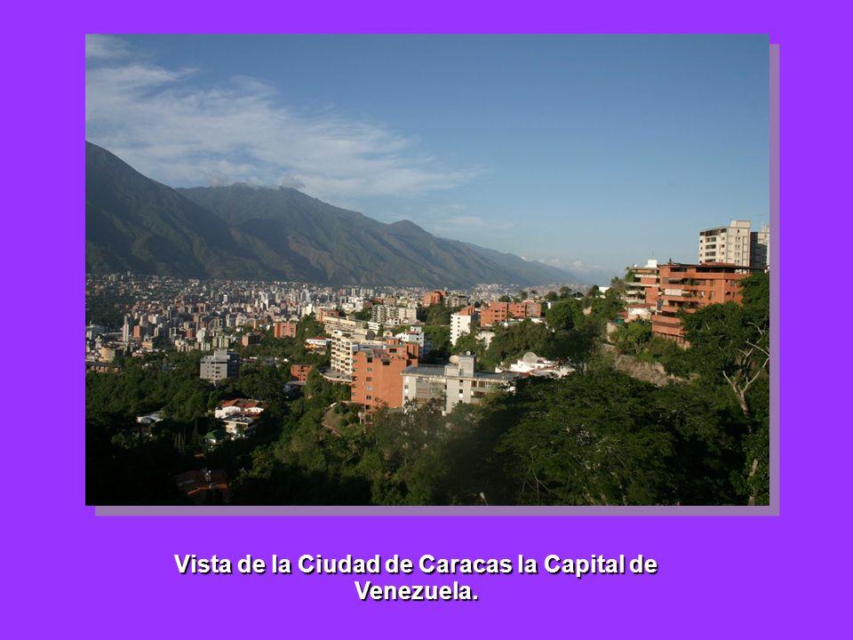 Vista de la Ciudad de Caracas la Capital de Venezuela.