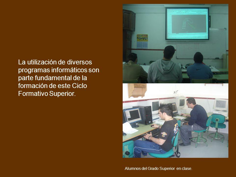Voy a trabajar como La utilización de diversos programas informáticos son parte fundamental de la formación de este Ciclo Formativo Superior.