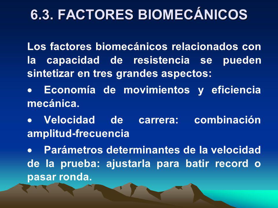 6.3. FACTORES BIOMECÁNICOS