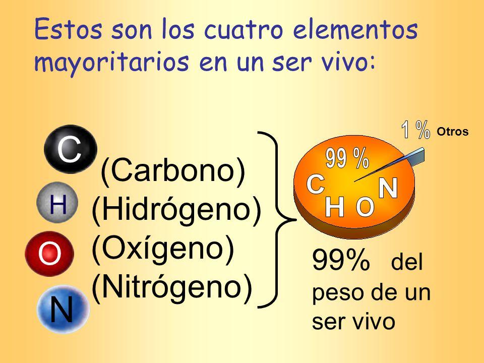 C N (Carbono) (Hidrógeno) (Oxígeno) (Nitrógeno) O