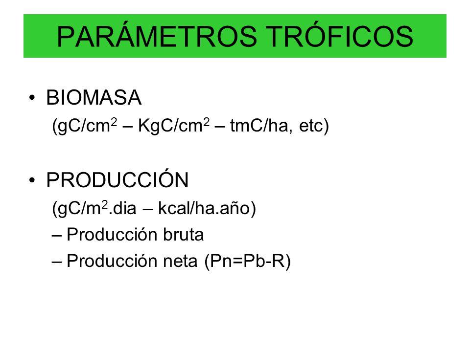 PARÁMETROS TRÓFICOS BIOMASA PRODUCCIÓN