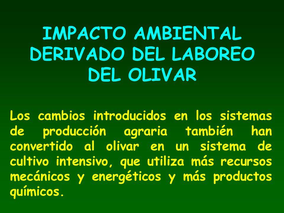IMPACTO AMBIENTAL DERIVADO DEL LABOREO DEL OLIVAR