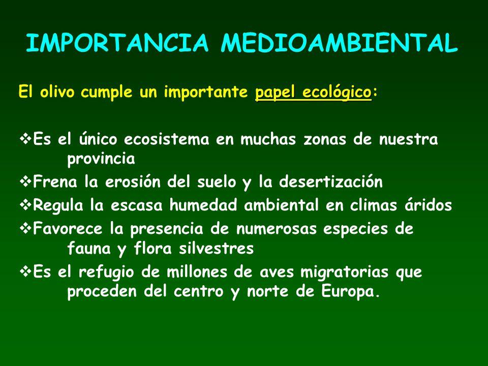 IMPORTANCIA MEDIOAMBIENTAL