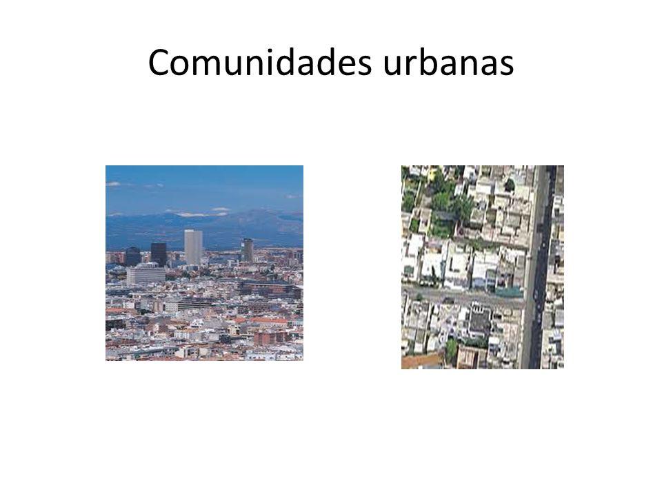 Comunidades urbanas