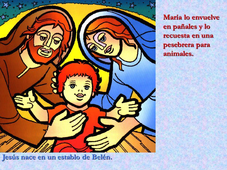 María lo envuelve en pañales y lo recuesta en una pesebrera para animales.