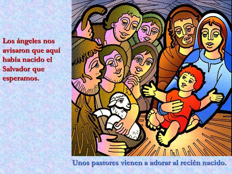 Los ángeles nos avisaron que aquí había nacido el Salvador que esperamos.