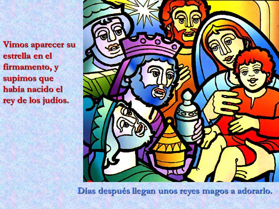 Vimos aparecer su estrella en el firmamento, y supimos que había nacido el rey de los judíos.