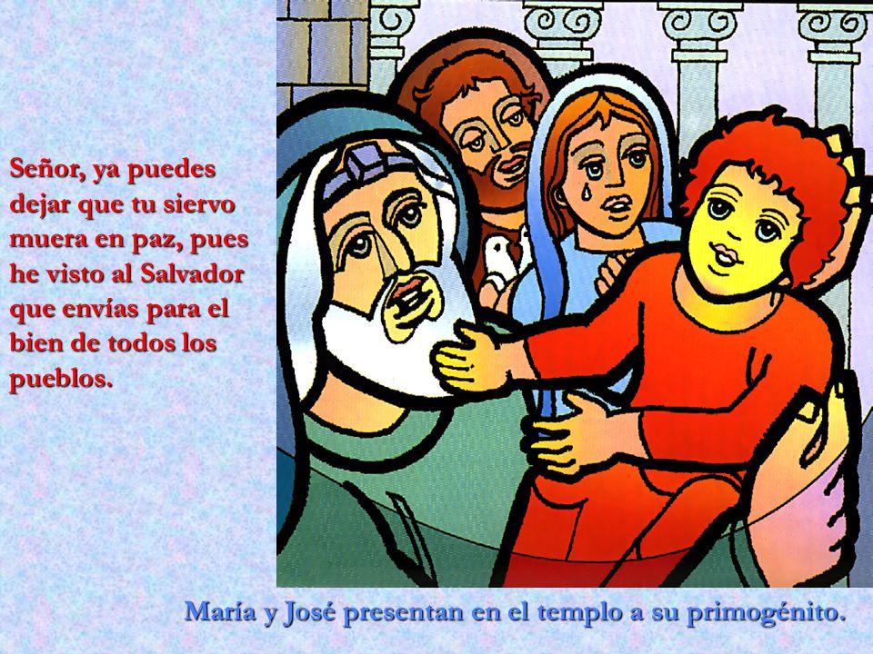Señor, ya puedes dejar que tu siervo muera en paz, pues he visto al Salvador que envías para el bien de todos los pueblos.