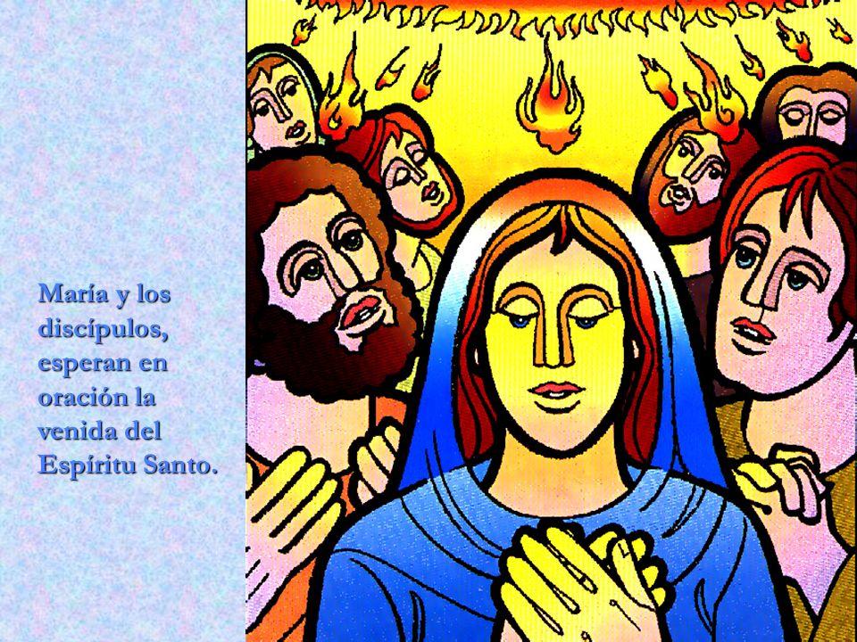 María y los discípulos, esperan en oración la venida del Espíritu Santo.