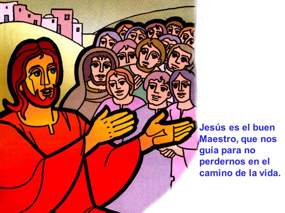 Jesús es el buen Maestro, que nos guía para no perdernos en el camino de la vida.