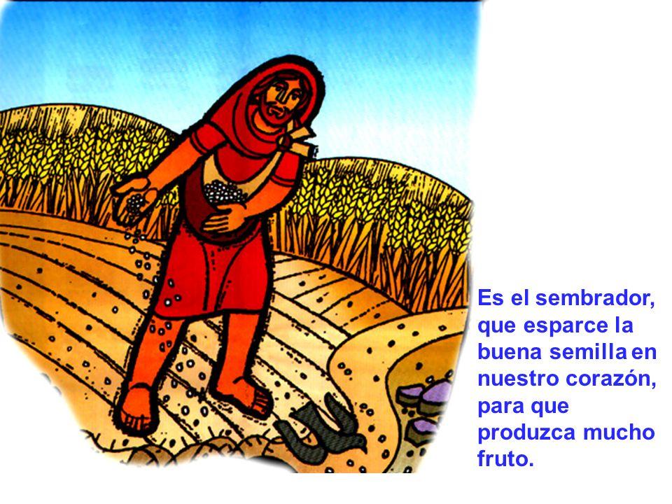 Es el sembrador, que esparce la buena semilla en nuestro corazón, para que produzca mucho fruto.