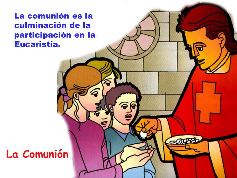 La comunión es la culminación de la participación en la Eucaristía.