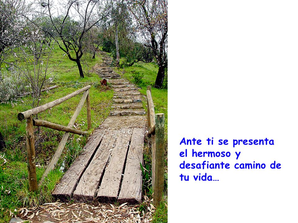 Ante ti se presenta el hermoso y desafiante camino de tu vida…