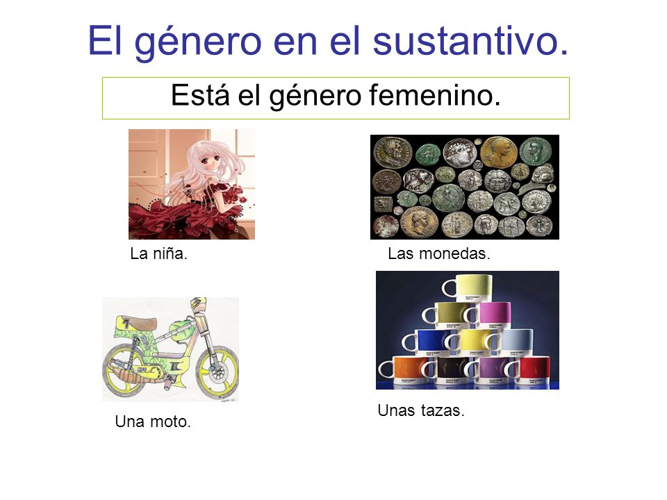 El género en el sustantivo.