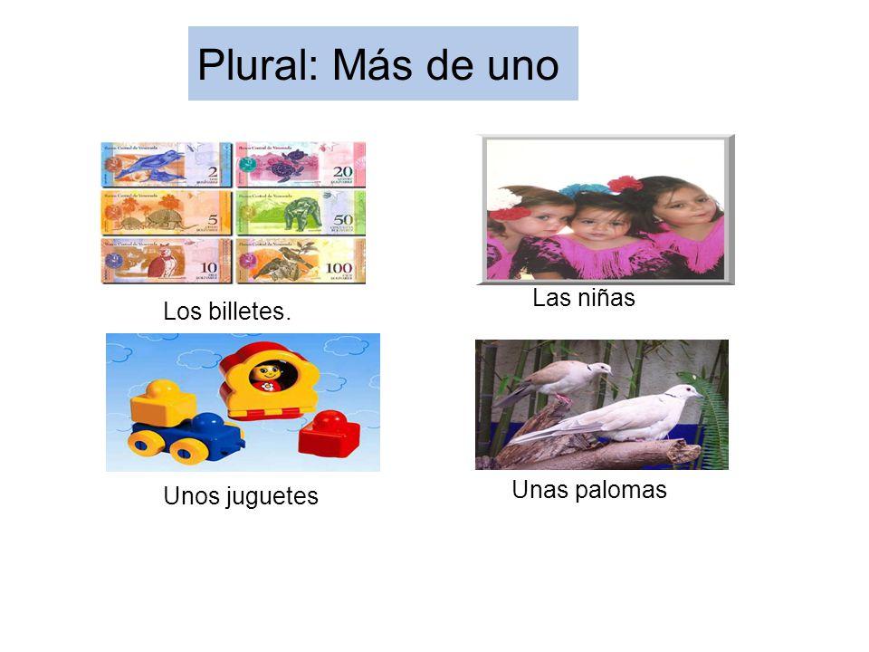 Plural: Más de uno Las niñas Los billetes. Unas palomas Unos juguetes