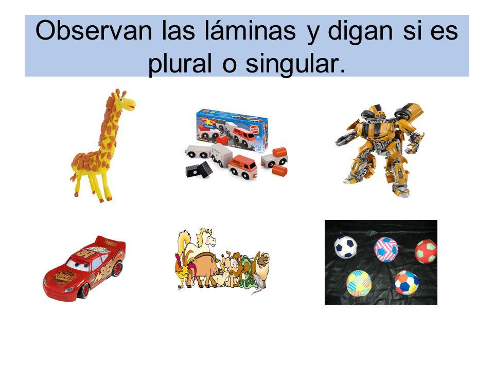 Observan las láminas y digan si es plural o singular.