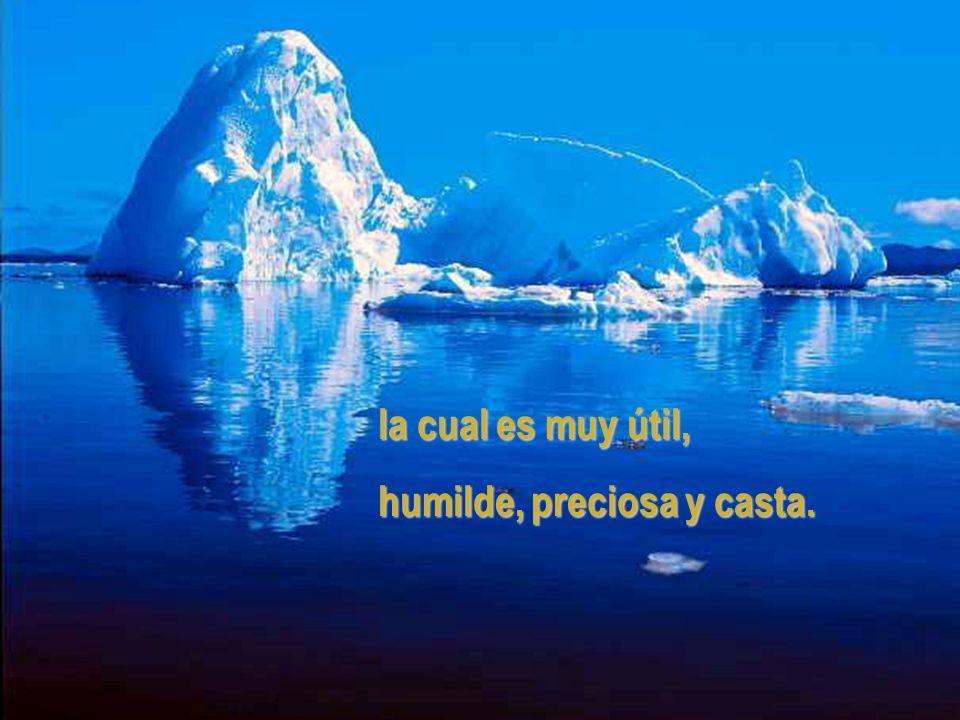 la cual es muy útil, humilde, preciosa y casta.