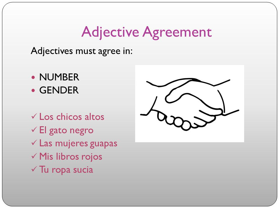 Adjective Agreement Adjectives must agree in: NUMBER GENDER