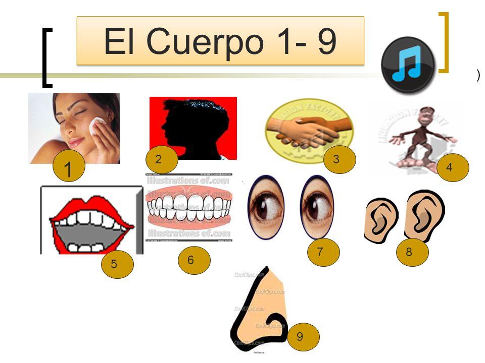 ) El Cuerpo 1- 9 2 3 1 4 7 8 6 5 9
