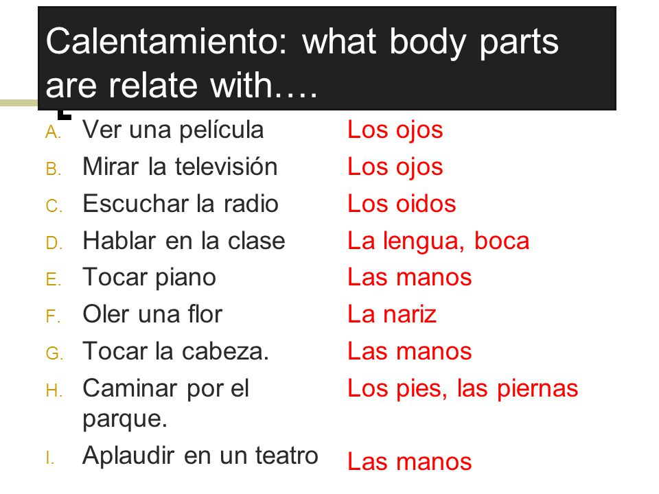 Calentamiento: what body parts are relate with….