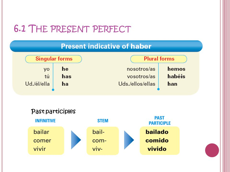 6.1 The present perfect Past participles