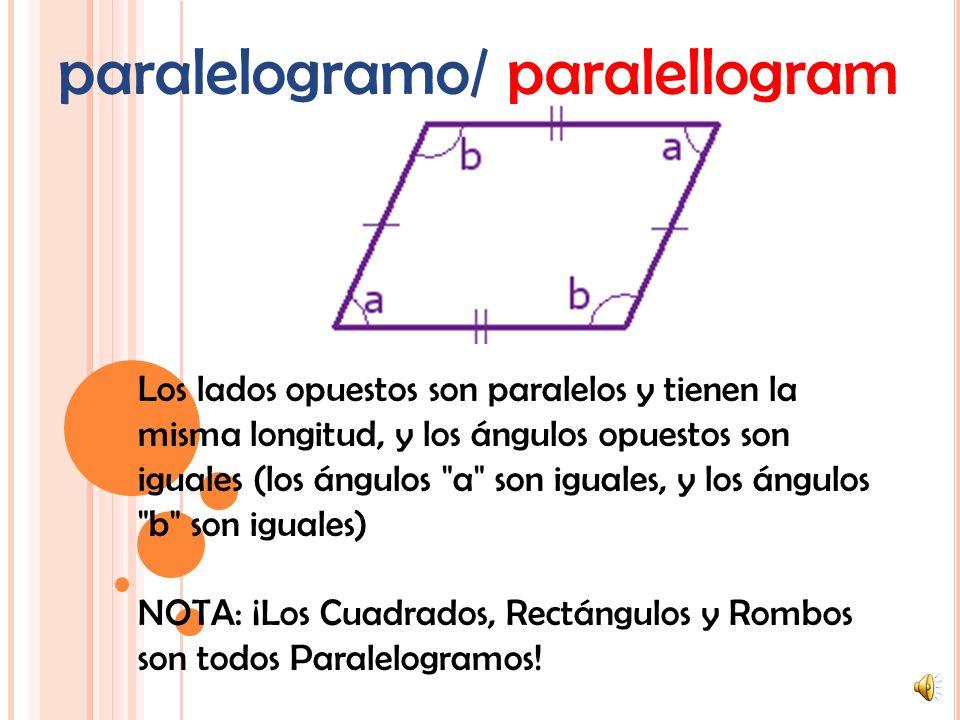 paralelogramo/ paralellogram
