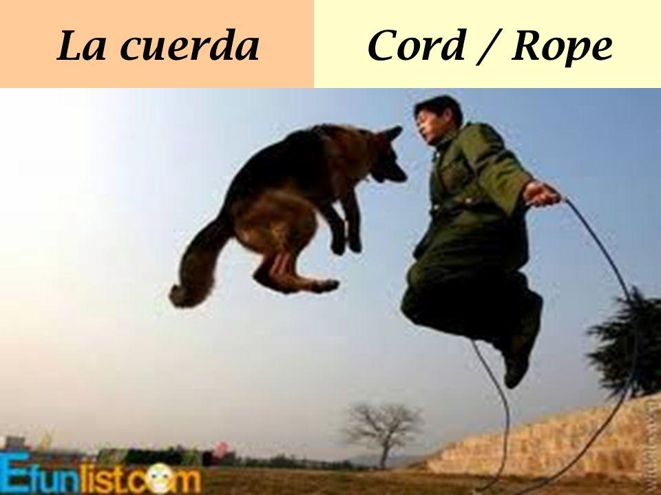 La cuerda Cord / Rope