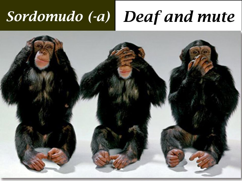 Sordomudo (-a) Deaf and mute