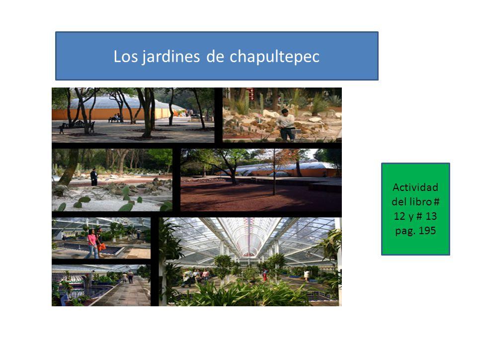 Los jardines de chapultepec