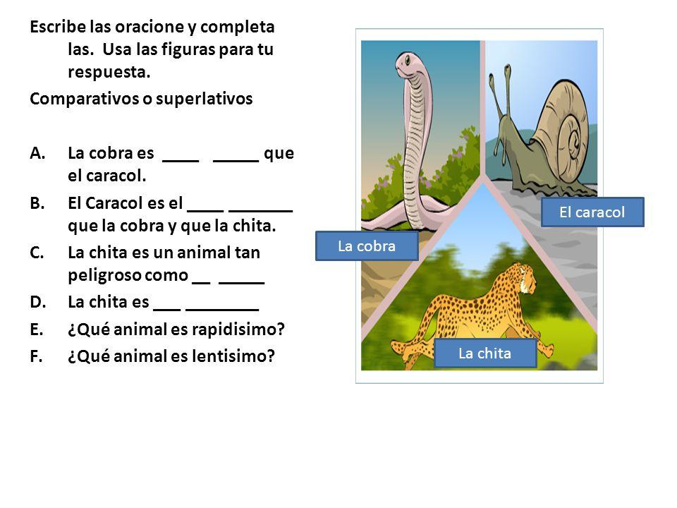 Comparativos o superlativos La cobra es ____ _____ que el caracol.