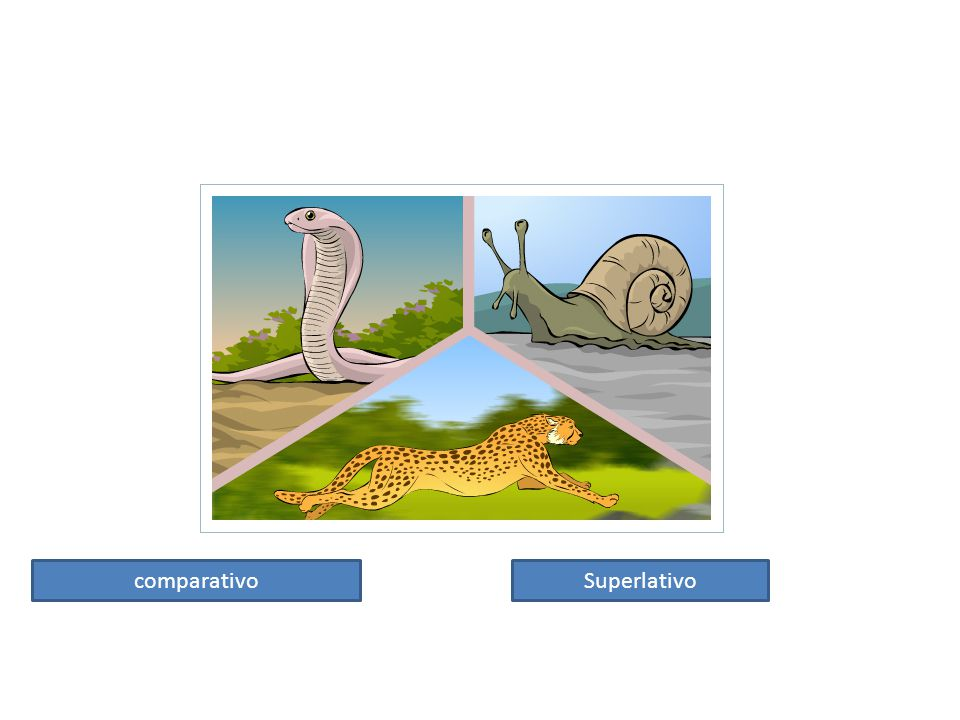 comparativo Superlativo