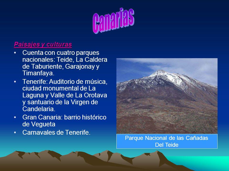 Parque Nacional de las Cañadas