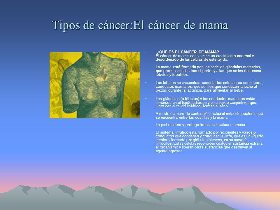 Tipos de cáncer:El cáncer de mama