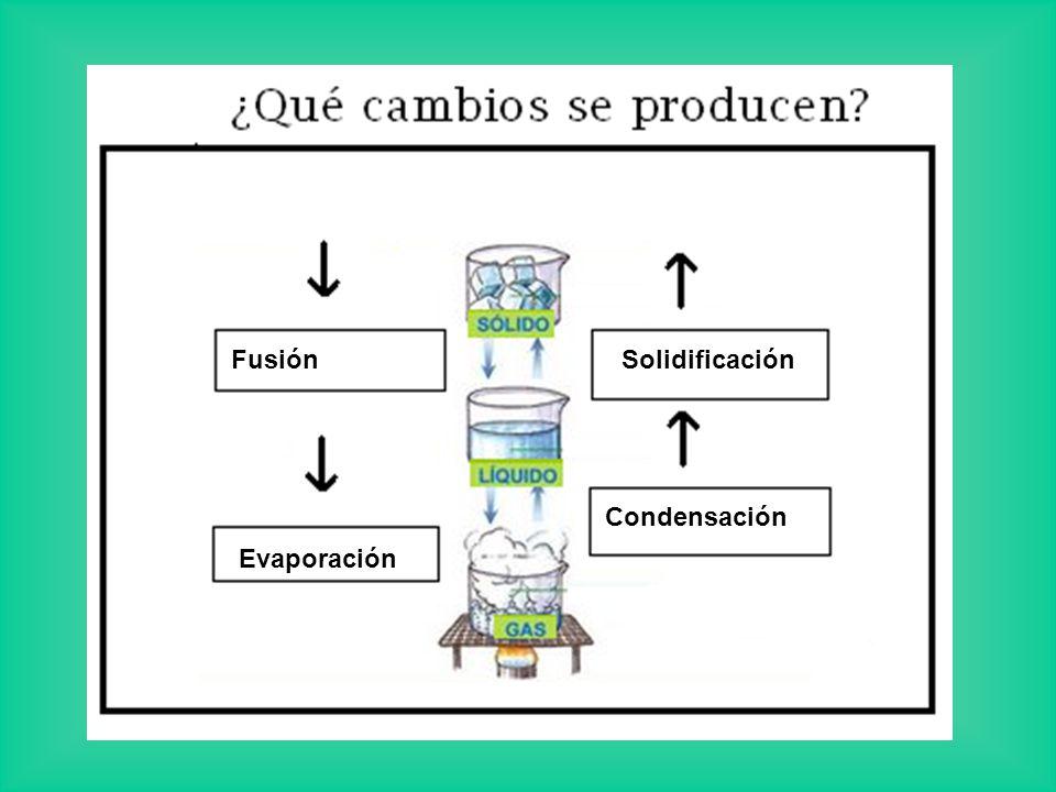 Fusión Solidificación Condensación Evaporación